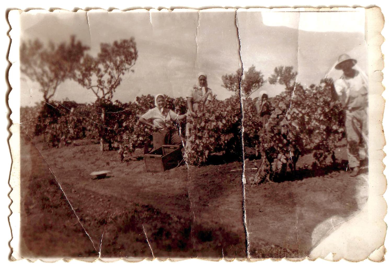 La abuela Ana (a la izquierda) guardó esta imagen en una cajita de jabón que preservó durante 60 años. Ottavio posa parado en el extremo derecho de la foto.